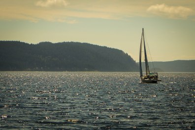 Look at that racing boat! Jeff and Brenda head off from Rosario. If you look closely, you can see their judgy eyes as they watch us sail towards Cypress Island.