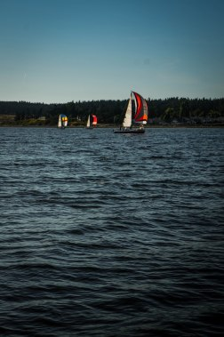 Racing in Penn Cove is VERY intense. We anchored right in the middle. (No we didn't. We're not assholes.)