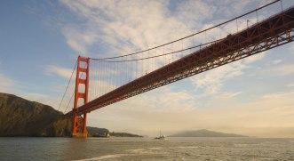 oh look! A bridge!