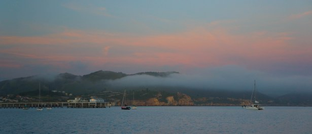 San Luis Obispo was a nice spot. We didn't go ashore, but there were otters so it was fine.
