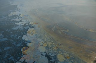 allegedly naturally seeped oil